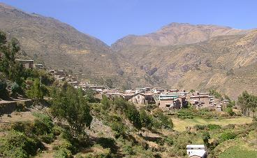 Robo de ganado vacuno en Atavillos Alto - Huaral